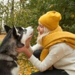 TRAINING SIBERIAN HUSKIES