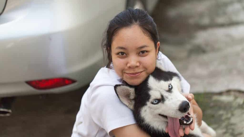 Are Siberian Huskies One-Person Dogs